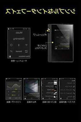 ONKYO Digital rubato Hi-Res Compatible DP-S1 JAPAN