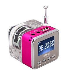 RivenAn Mini Digital Portable Music MP3 Player Micro SD USB